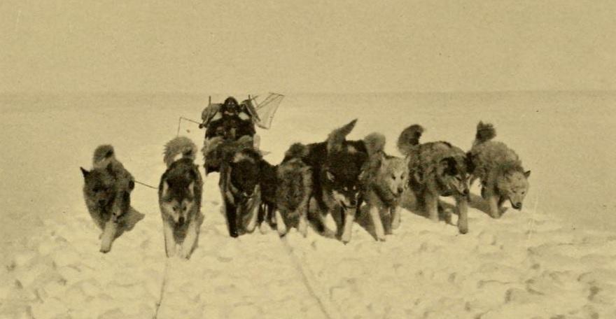 alimentacion-inuit-eskimo